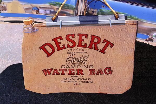 Desert Water Bag By Viktor Savchenko Desert Water Bag