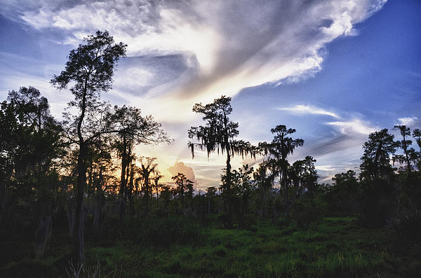 Jeanne  Woods - Destrehan Swamp Sunset
