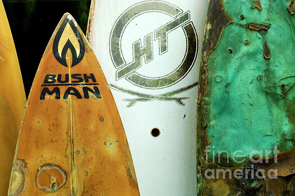 Detail Surfboard Fence Print by Bob Christopher