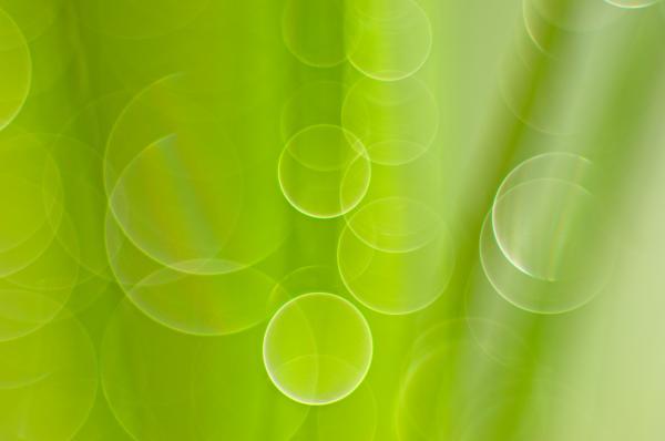Silke Magino - Dewdrops