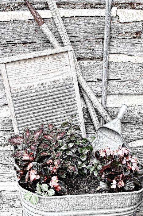 Digital Sketch Wash Tub And Flowers Print by Linda Phelps
