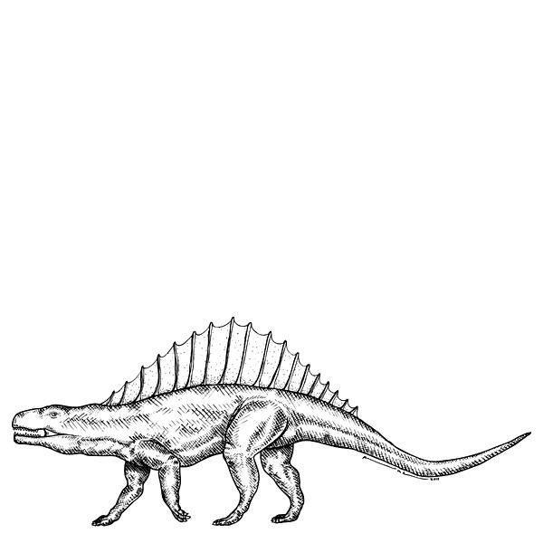 Dimetrodon - Dinosaur Print by Karl Addison