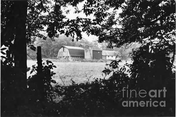 Kathryn Donatelli - Distant Farm