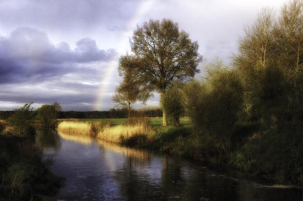 Gigi Embrechts - Distant Rainbow