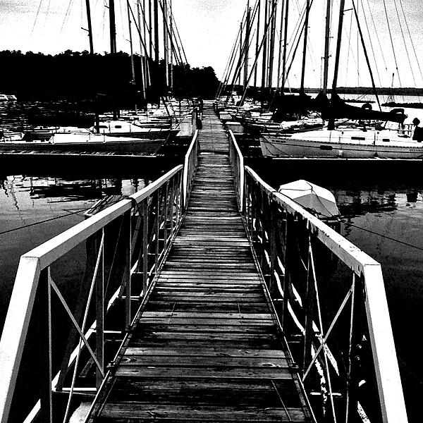 Dock And Sailboats Print by Kevin Mitts