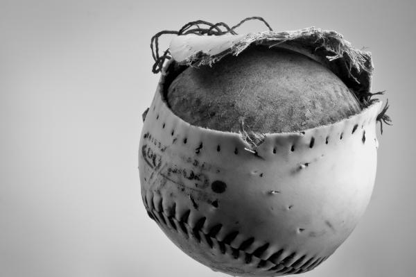 Dog's Ball Print by Bob Orsillo