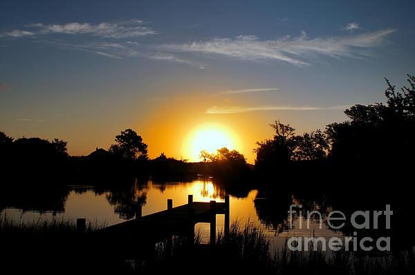 Benanne Stiens - Dolphin Cove Sunrise