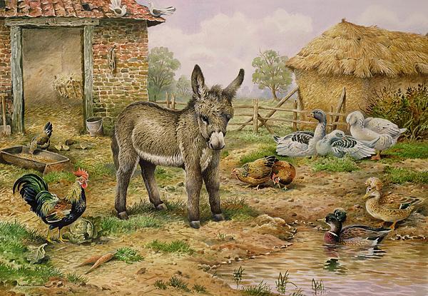 Donkey And Farmyard Fowl  Print by Carl Donner