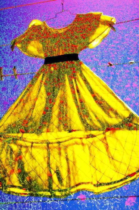 Dorothys Fix Print by Skip Hunt