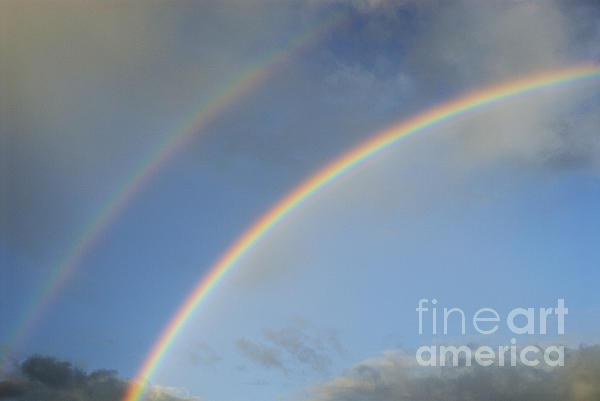 Double Rainbow Print by Sami Sarkis
