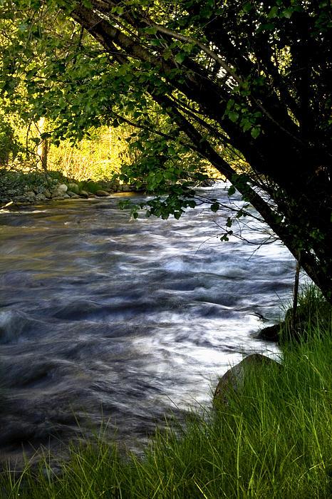 Down By The River By Ellen Heaverlo