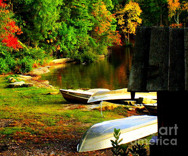 Down By The Riverside Print by Karen Wiles