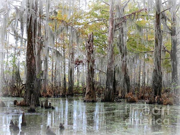Down On The Bayou - Digital Painting Print by Carol Groenen