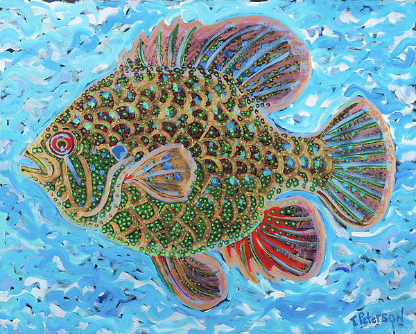 Dream fish by todd peterson for Todd s tropical fish