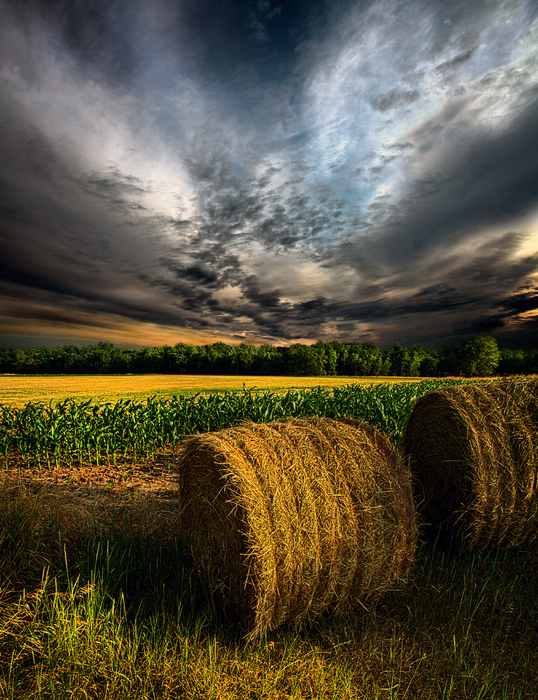 Phil Koch - Drought