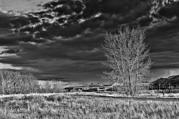 Drumheller Valley In Black And White Print by Jim Justinick