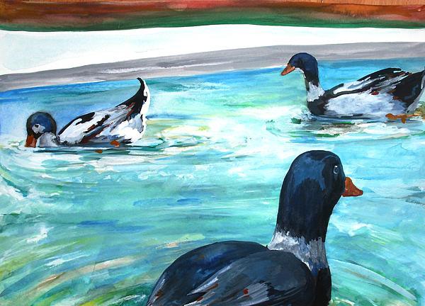 Sonya Ragyovska - Ducks