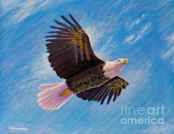 Eagle Heart Print by Brian  Commerford