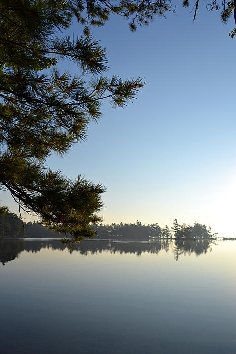 Early Morning On Lost Lake Print by Michelle Calkins