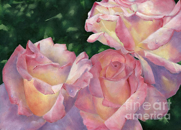 Early Morning Roses Print by Sheryl Heatherly Hawkins