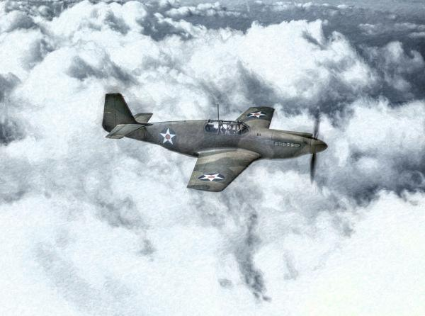 Early P-51 Mustang Fighter  Print by Randy Steele