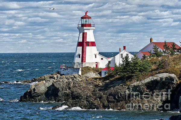 East Quoddy Lighthouse Print by John Greim