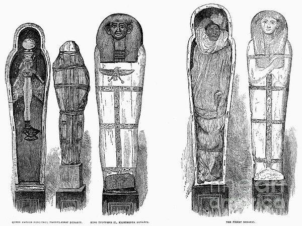 Egypt: Royal Mummies, 1882 Print by Granger
