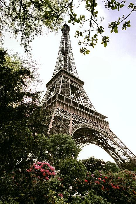 Eiffel Tower Print by Joe Bonita