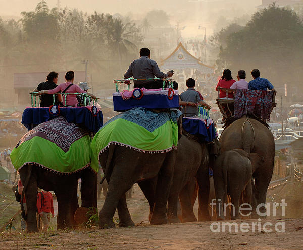 Bob Christopher - Elephant Festival Laos