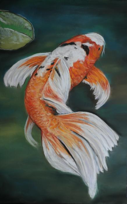 Fin feathers and wings watercolor on pinterest koi for Black butterfly koi