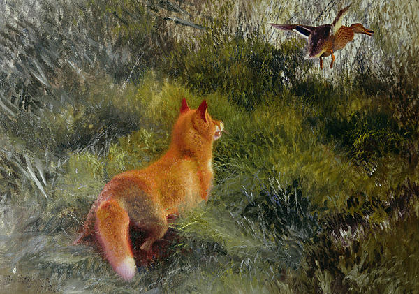 Eluding The Fox Print by Bruno Andreas Liljefors