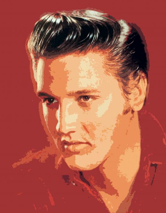 Elvis Presley - The King Print by David Lloyd Glover