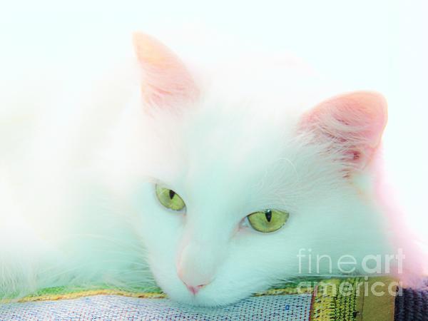 Judy Via-Wolff - Emerald Dream Eyes