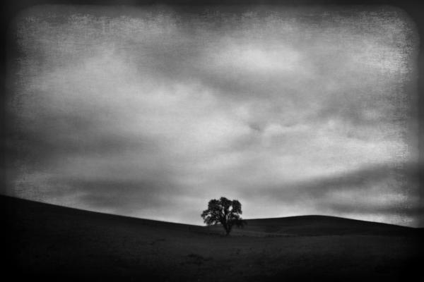 Emptiness Print by Laurie Search