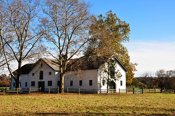 Bill Cannon - Equestrian Stable Erdenheim Farm