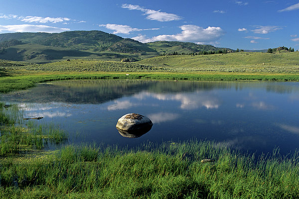 Erratic Boulder And Small Pond In Lamar Valley Print by Altrendo Nature