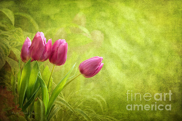 Essence Of Spring Print by Reflective Moments  Photography and Digital Art Images