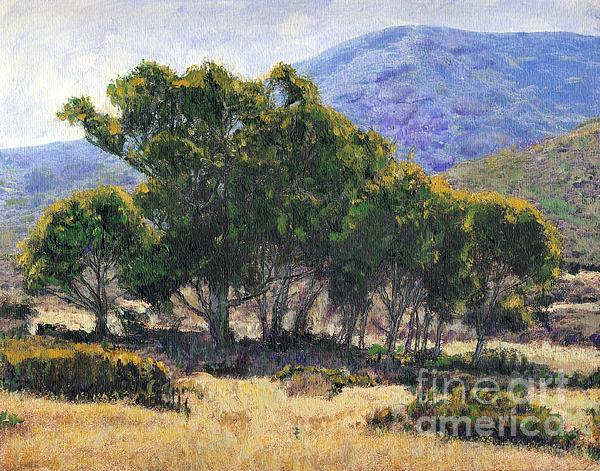 Randy Sprout - Eucalyptus Grove Catalina