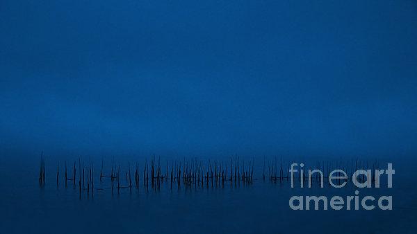Evening Blues.. Print by Nina Stavlund