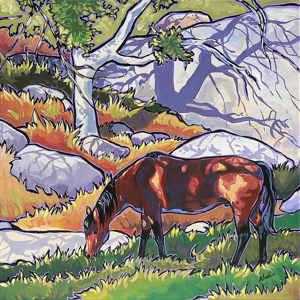 Evening In Deer Canyon Print by Nadi Spencer