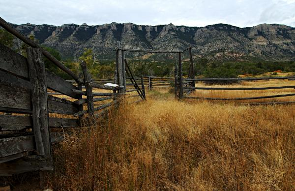 Ewing-snell Ranch 1 Print by Larry Ricker