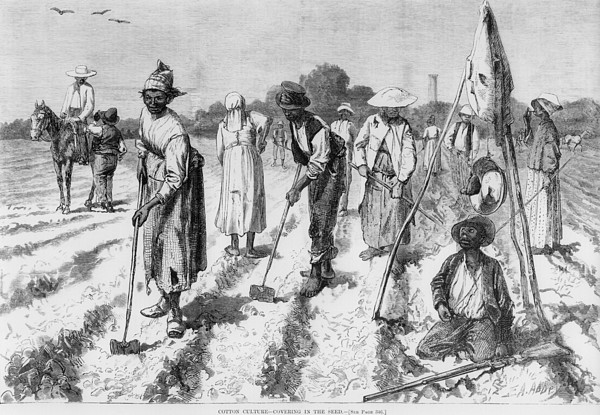 Ex-slaves, Working In A Gang Print by Everett