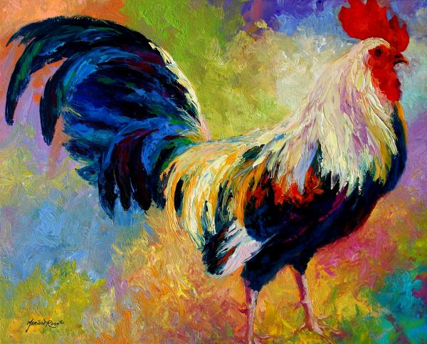 Eye Candy - Rooster Print by Marion Rose