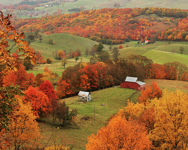 Fall Foliage In Virginia By Kevin Shank Family