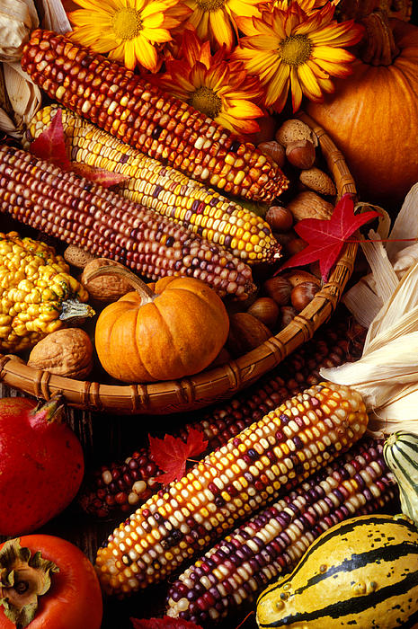 Fall Harvest Print by Garry Gay