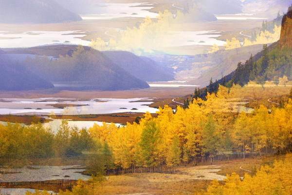 Fall In The Rockies Print by Marty Koch