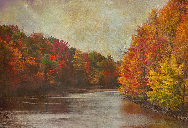 Fall Pallate Print by Heather  Rivet