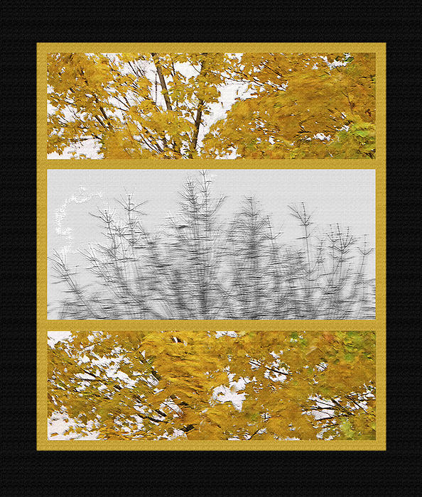 Fall Wind Triptych Print by Steve Ohlsen