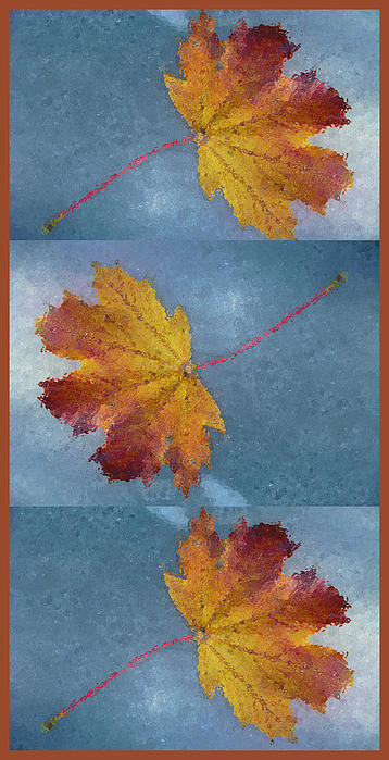 Falling Autumn Leaves Print by Margie Avellino