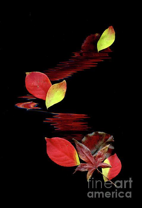 Falling Leaves Print by Gerlinde Keating - Keating Associates Inc